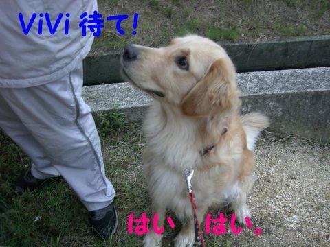 Vivi_2
